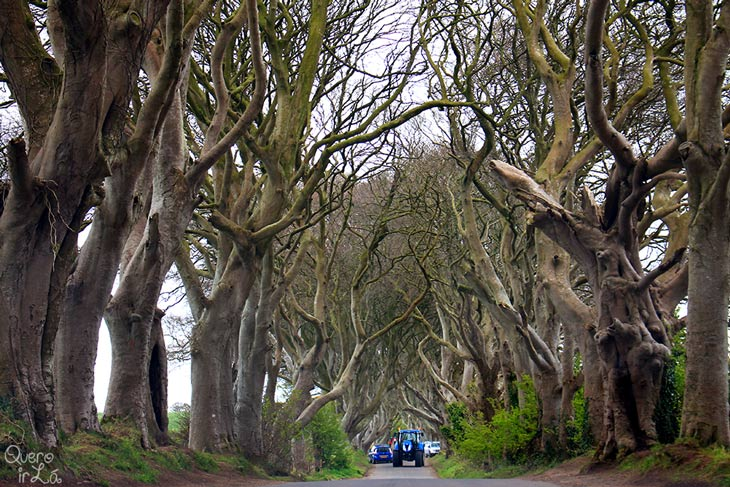 Roteiro Irlanda do Norte, The dark Edges, onde foram gravadas cenas de Game of Thrones